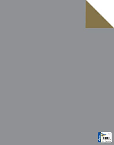 Royal Consumer Poster Board, Two Cool Gold/Silver, 22 x 28 Inches, Pack of 25 (24316B)