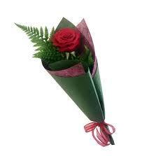 Rosa Roja Natural Fresca A Domicilio Amazones Jardín