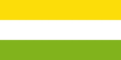 magflags-large-flag-san-pedro-sucre-municipio-de-san-pedro-sucre-escogida-a-traves-de-concurso-organ