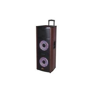 (QFX SBX-6612200BT 2x12 Pro PA BT Spkr USB FM)