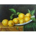 Vivid Handmade Art Crafted Still Life Oil Painting-Lemon