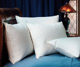 Pacific Coast Down Surround Standard Pillow Set (2 Standard Pillows) (Pillows Hampton)