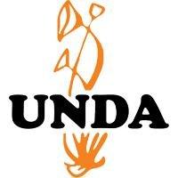 Ilex aquifolium 125 ml gemmothérapie UNDA Brand: UNDA
