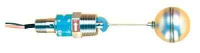 Gems Sensors 30290 316 Stainless Steel Float Single Point Side Mounted Level Switch, 2'' Diameter, 1'' NPT Male, 1'' Actuation Level, 20VA, SPDT