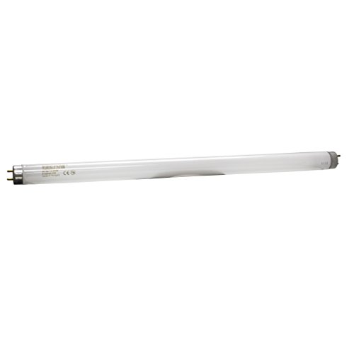 Vector Classic Replacement Bulbs 2 pk ()