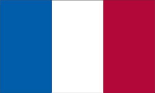 3x5 FT French France Flag Sewn Stripes