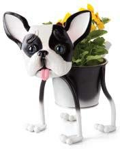 Georgetown French Bulldog or Boston Terrier Planter