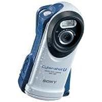 Sony DSCU60 2.0 Megapixel Digital Camera Basic Facts Review Image