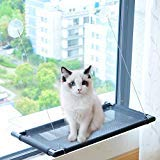 Pakeway Cat Window Perch Hammock Cat Bed with Upgraded Version 4 Suction Cups, Safest Cat Bed for Large Cat can Holds Up to 50lbs (Black) by Pakeway