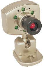 Digital Peripheral Solutions QSICB2 Black White Video Camera