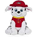 Paw FO26772973 Kids Coin Bank , 7.5
