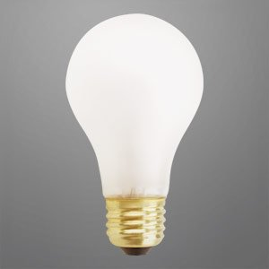 Shatterproof Light Bulb 60 Watts 10 000 Hours Light Bulb Rough Service Long Life Incandescent