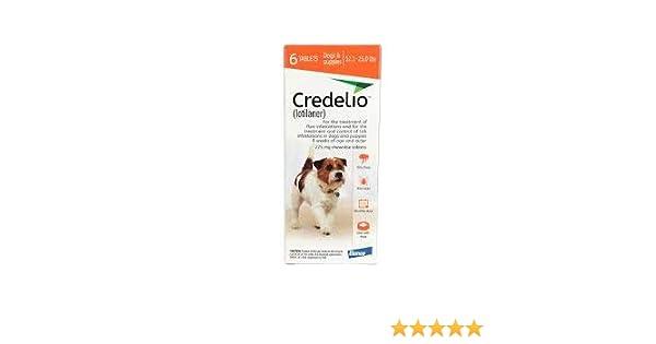 CREDELIO Pastilla ANTIPULGAS Y GARRAPATAS 5,5-11 KG: Amazon.es: Productos para mascotas