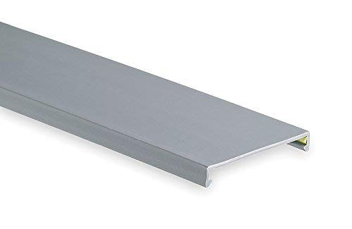 Flush 3.25W x 0.37D Gray Wire Duct Cover