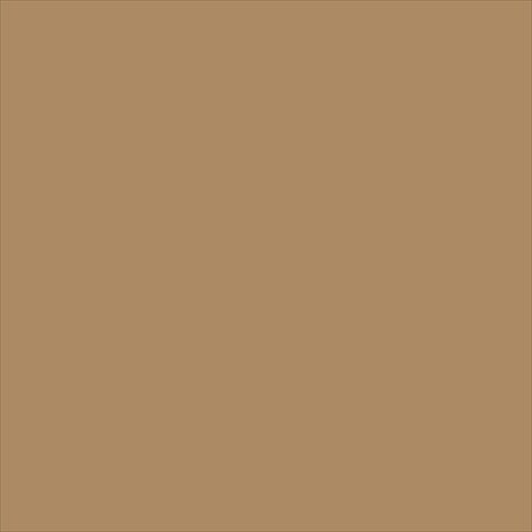 School Smart Heavyweight Construction Paper - 9 x 12 inches - Pack of 100 - Light Brown