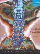 Human Anatomy 5Th Edition By Marieb  Elaine Nicpon  Mallatt  Jon  Wilhelm  Patricia Brady Published By Benjamin Cummings Pub Co Hardcover