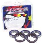 06-13 HONDA RINCON680: All Balls Front Wheel Bearing Kit