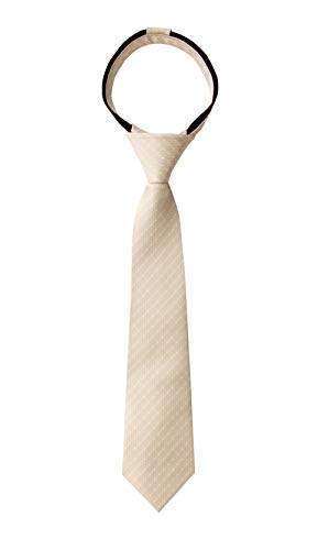 Spring Notion Boy's Dotted Woven Zipper Tie Champagne Medium (Champagne Tie For Boys)