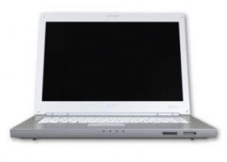 Sony VAIO VGN-N31S/W CORE 2 DUO T5500 100GB - Ordenador portátil (