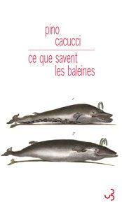 Ce que savent les baleines