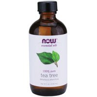 Now Foods Tea Tree Oil, 4 Ounces, Pack of 3 (Now Foods Wintergreen Oil compare prices)