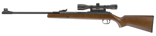 RWS .177 Pellet Model 34 Combo Rifle (Wood, Large)