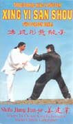 Xing Yi San Shou Two Person Drill