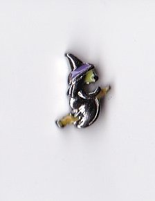 Halloween Witch on Broom Floating Charm]()