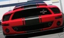 Краска автомобильная Hi-Performance Snake Stripes With