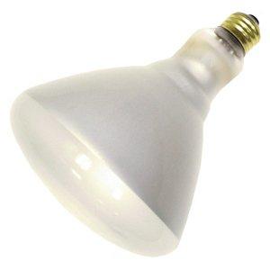 Philips 389320 - 250BR40/1 Heat Lamp Light Bulb ()