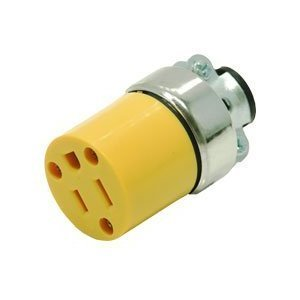 (Pit Bull TAIGE6887 Female Plug Orange(240/C))