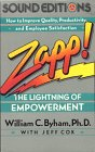 Zapp! The Lightning of Empowerment: How to Improve Quality, Productivity, and Employee Satisfaction by Brand: Random House Audio