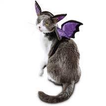 Bootique Bat Cat Costume, One (Pet Bat Costumes)