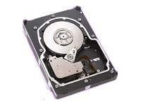 (ST336753LC, SEAGATE Cheetah 37 GB Ultra320 SCSI 15K RPM)