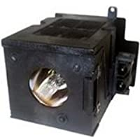 Replacement Lamp with Housing for BENQ PE8700 with Ushio Bulb Inside