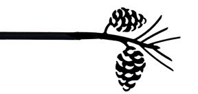 curtain rod pine cone - 5