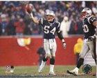 (North East Sports Merchandise New England Patriots Tedy Bruschi 2004 Playoffs)