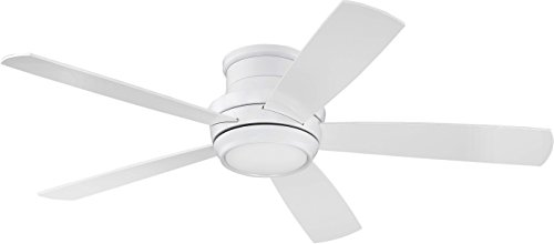 Craftmade Flush Mount Ceiling Fan with LED Light and Remote