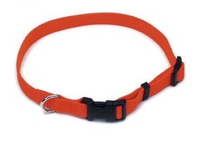 Remington Sporting Dog Nylon Hound Collar, Orange, 3/4 in., Adj. 14in.-20in.