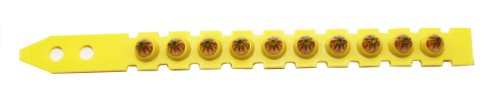 Hilti Powder Actuated Fastener Cartridge - .27 6.8/11 M Short - Strips of 10 - Yellow - Medium - Pack of 100 - 50352 by HILTI