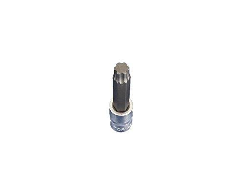 TEMO Torx Plus 60IP 4 inch (100mm) Long Bit Socket 1/2 inch (12.7mm) Square Drive Auto Repair Impact Ready Tool ()