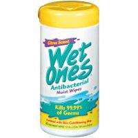 Wet Ones Citrus Scent Antibacterial Moist Wipes 40 ct (Pack of 12) (Wet Ones Moist Wipes Antibacterial)