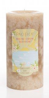 Malibu Lemon Blossom 3x6 Pillar-3x6 Brand: Pacifica