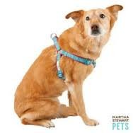 'Martha Stewart Pets Houndtooth Blue & Pink Harness Xs'