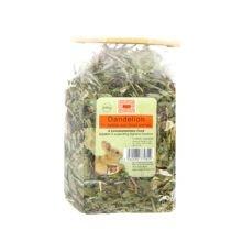 Burns Whole Dandelion - Whole Dandelion Plant