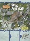 Wild Animals, Patricia Walsh, 1403489327
