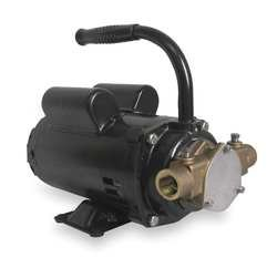 Dayton 3ABZ5 Pump, Bronze, 1/2 HP, 115/230V, 8.4/4.4 Amps by Dayton