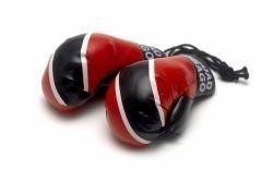 (Mini Boxing Gloves - Trinidad & Tobago by Reppa)