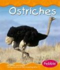 Ostriches, William John Ripple and William J. Ripple, 0736836365