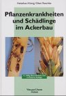 img - for Pflanzenkrankheiten und Sch dlinge im Ackerbau. book / textbook / text book